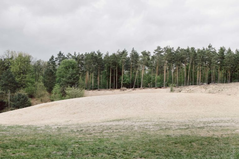 Sandgrube im Grunewaldd